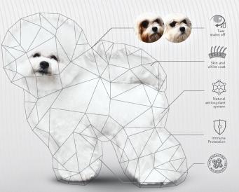 Корм для собак с белой шерстью!